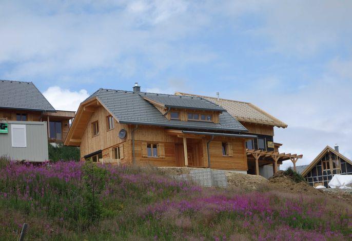 Ferienhaus Murmeltier am Klippitztörl