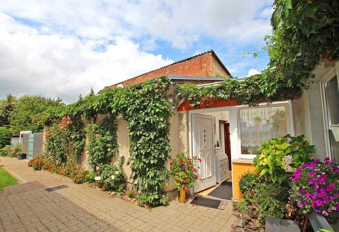 Ferienhaus Waren Müritz SEE 10221