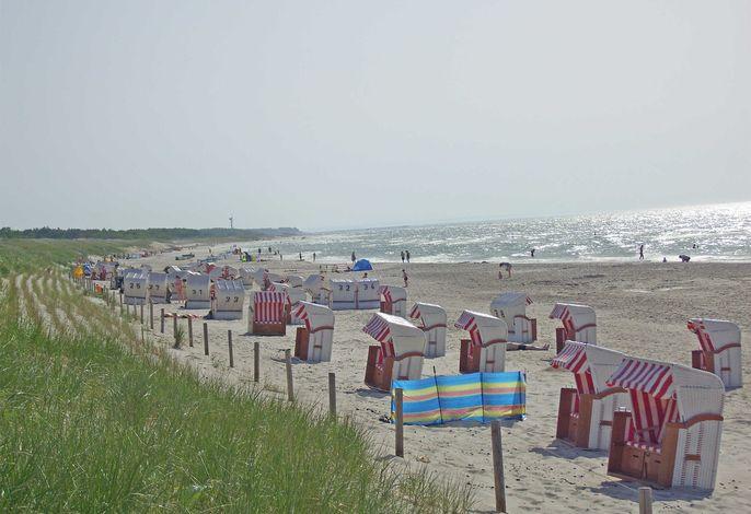Ferienwohnungen Dierhagen direkt am Strand FDZ 610