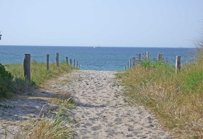 Ferienwohnungen direkt am Strand Dierhagen FDZ 620