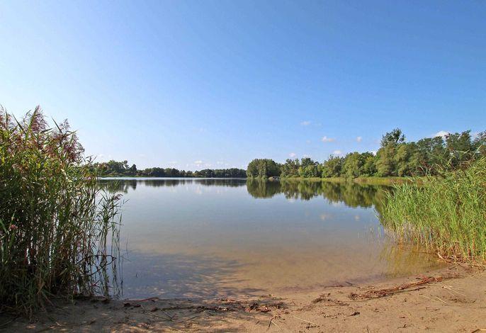 Ferienwohnung am See Wichmannsdorf UCK 1161