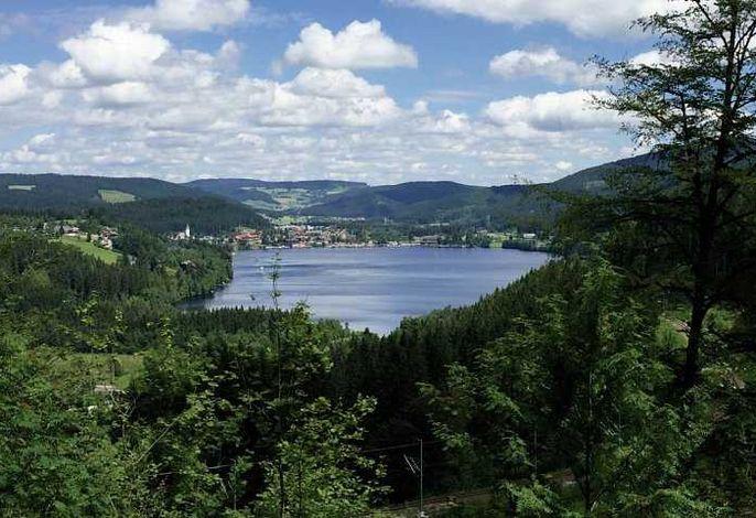 Residenz Grafenmatt am Feldberg im Hochschwarzwald