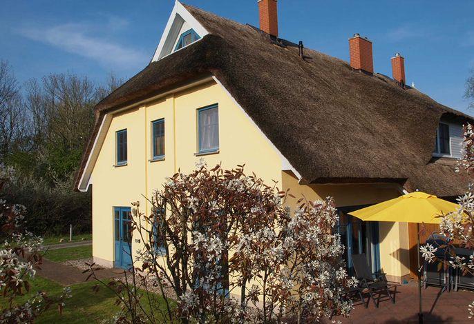 Sonniges Reetdachhaus