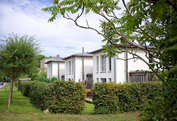 Ferienhaus an der alten Gärtnerei Lavendel