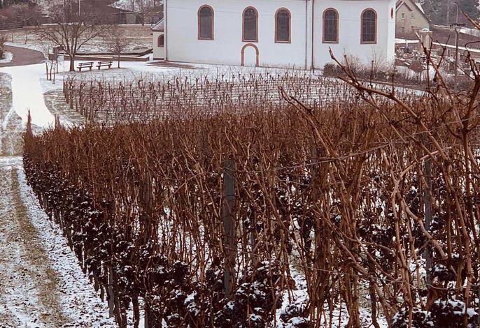 Ferienhaus Villa Mandelblüte