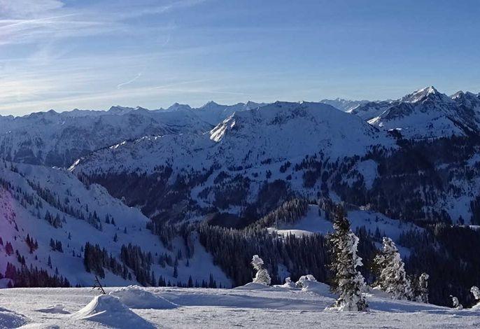 Alpenappartement Kleiner