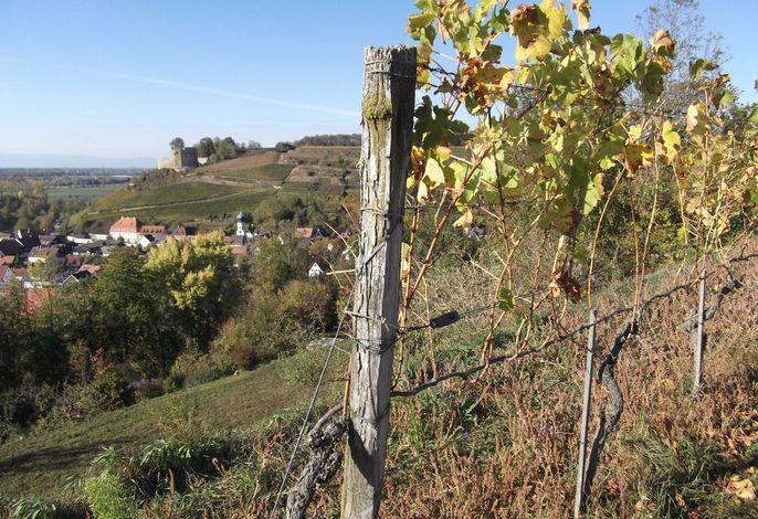 Das Dorf Hecklingen