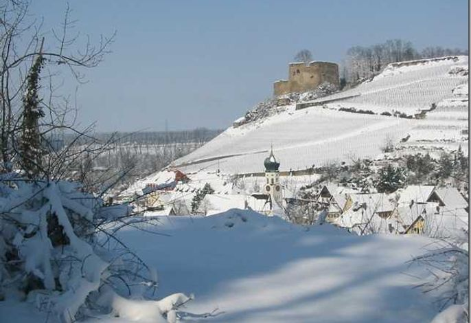 FeWo im alten Schlossgarten - Kenzingen / Region Europa-Park