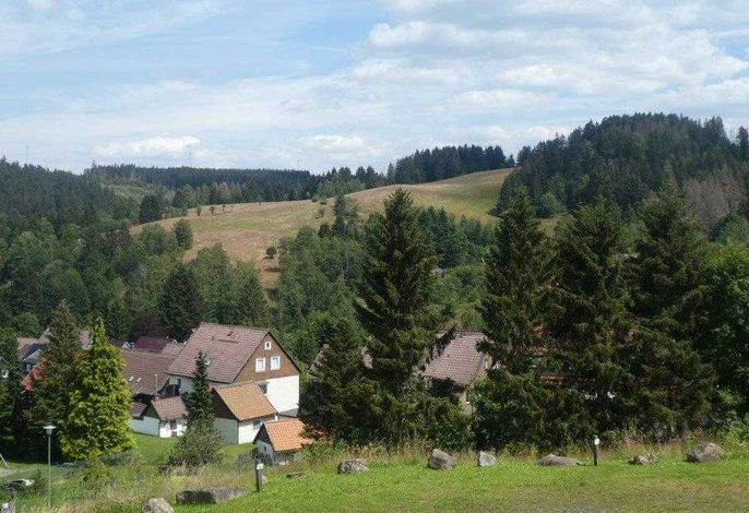 MountainLodge - SORGENFREI BUCHEN*