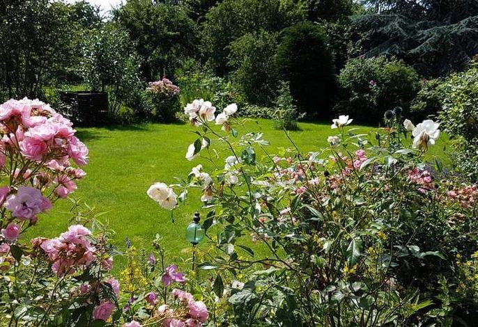 Ferienhaus Meeridyll - mit Terrasse und Garten