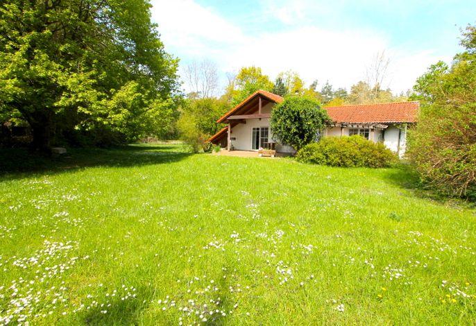 >Haus am Wald Nr. 2< idyllisch ruhig im Naturschutzgebiet