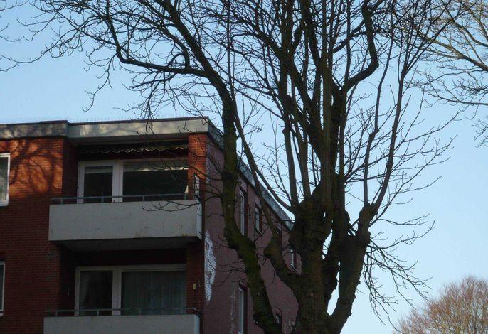 Wohnung Lütt Lee