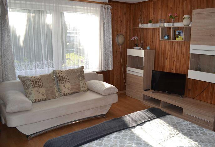 Wohn-Schlafraum mit Doppelbett und Schlafcouch