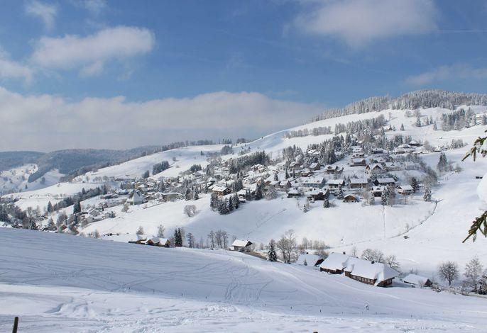 Fewo Schwarzwald 1060m