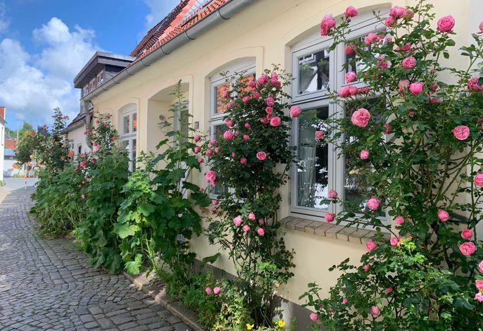 Jule's Altstadthaus