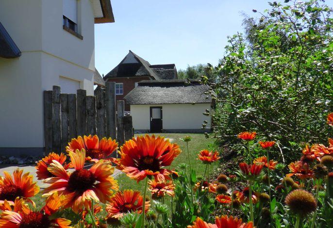 E11 Ferienhaus mit Sauna & Kamin Strandgut Ostseebad Rerik