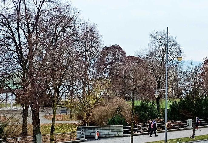 BodenSEE City Apartment Friedrichshafen CASA GRAF