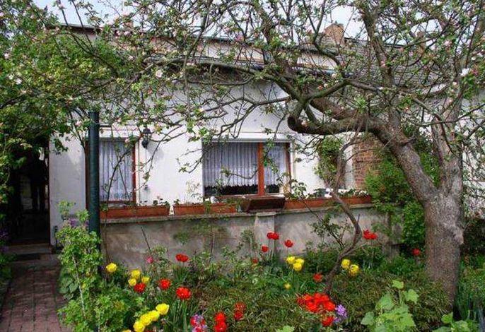 Ferienhaus Malchow SEE 4671