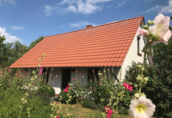 Ferienhäuser Michaelis 5 in Quilitz