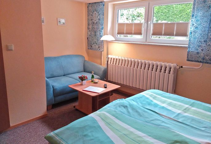 Kombiniertes Wohn-und Schlafzimmer