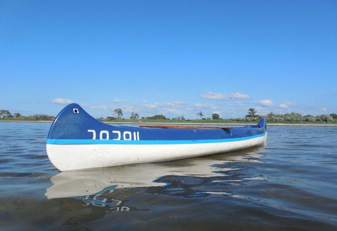 Blaues Strandhaus mit Boot am Salzhaff, 50m zum Strand
