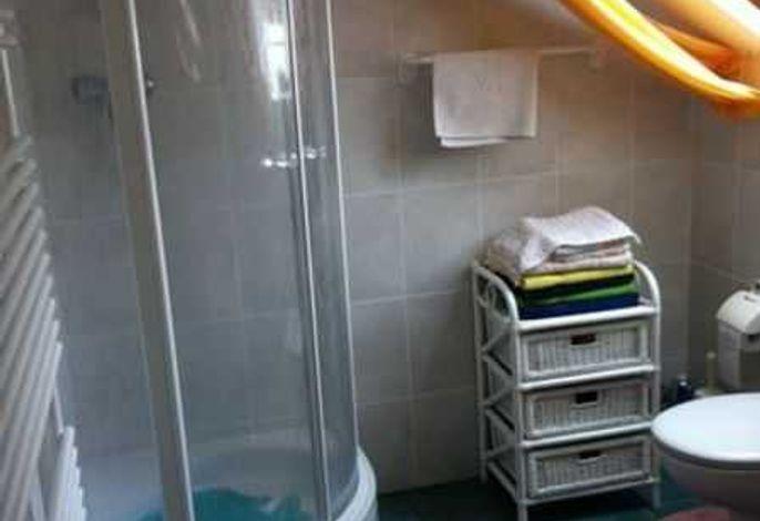 modernes Badezimmer mit Eckdusche