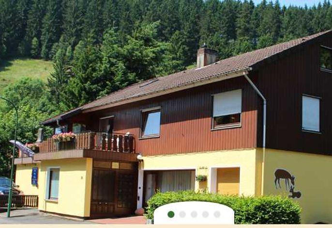 Pension Haus Brückner - Ferienwohnung SORGENFREIES REISEN*