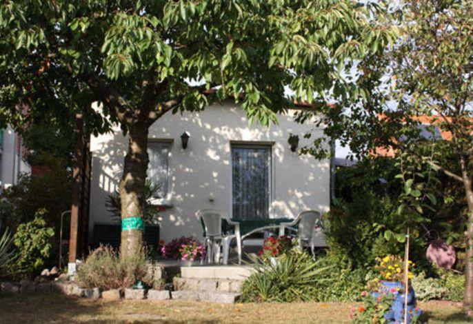 Ferienhaus Waren SEE 5521