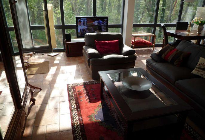 Couchblick zum Waldrand