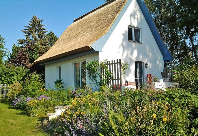 Reetdachhaus am Strelasund