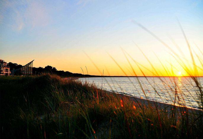 Ferienwohnung Rügen Ostseeperle