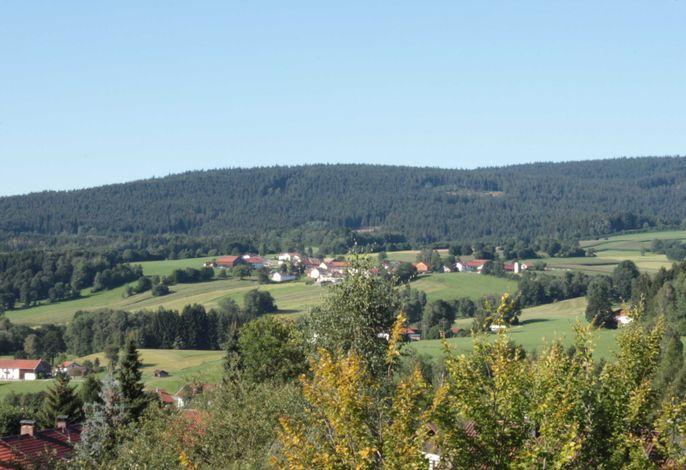 Fewo mit malerischem Bergblick im Bayerischen Wald
