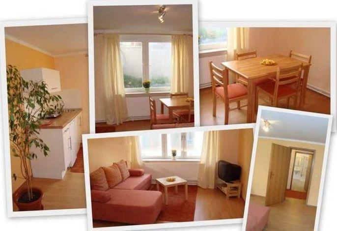 Wohnzimmer mit Küchenzeile, Esstisch und Schlafcouch