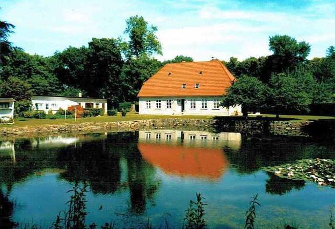 Rügen-Fewo 103