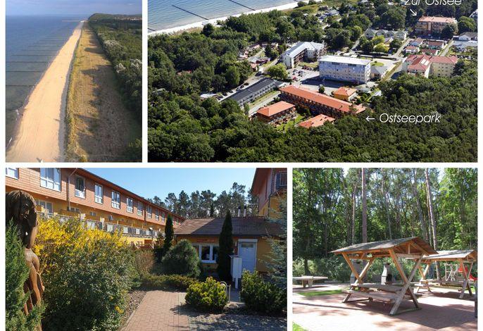 Zempin Ostseepark WE 12 **Insel Usedom**150m zum Strand**