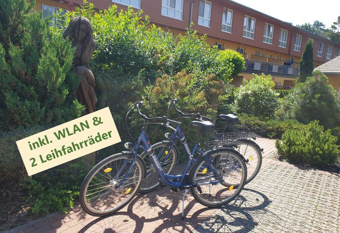 Zempin Ostseepark WE 47**Insel Usedom**150m zum Strand**