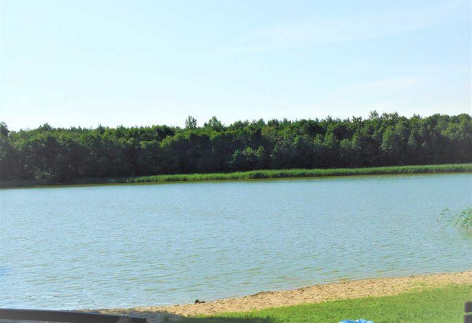 Ferienhäuser Seewiesen