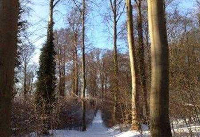 Ferienpark Streckelsberg *10 Min. zum Ostseestrand*