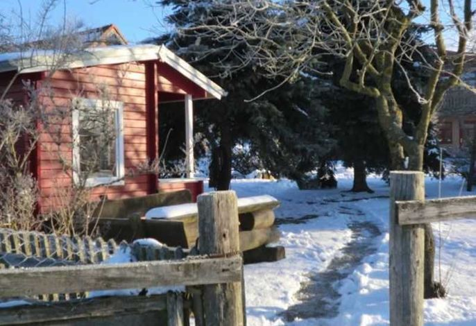 Landhof zur Meierei - auch Reitferien