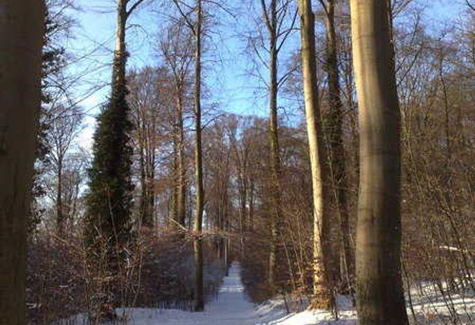 ***200m zum Sandstrand - Haus Andra Bj. 2012***