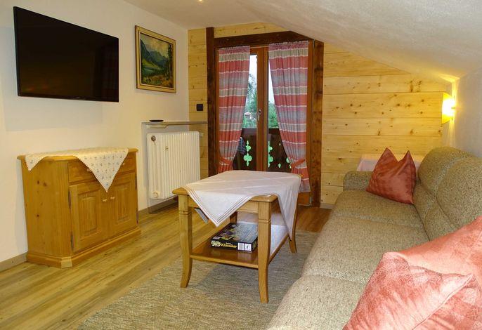 Wohnzimmer mit Schlafcouch und Balkonzugang