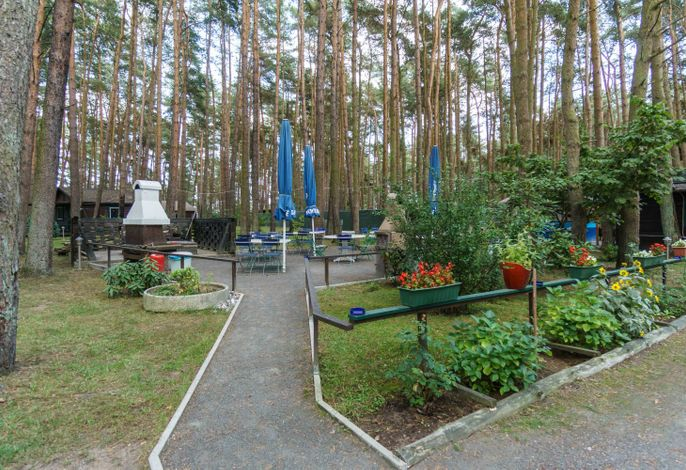 Urlaub im Bungalow - mitten im Wald