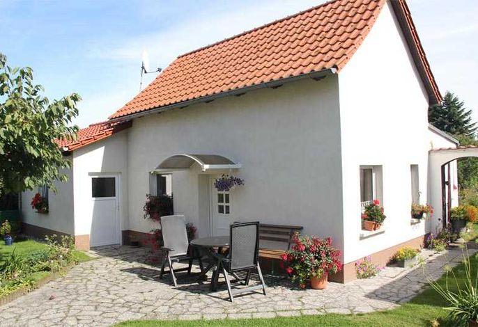 Ferienhaus Bellin VORP 2501