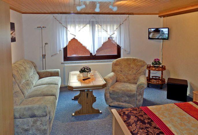 Wohn-/Schlafraum mit Sofa, TV und Doppelbett