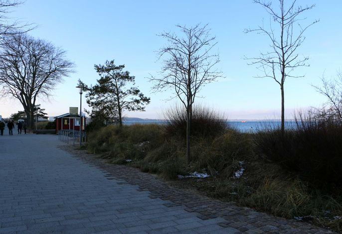 (STR81b) - Ferienwohnung Steinmetz - Landseite