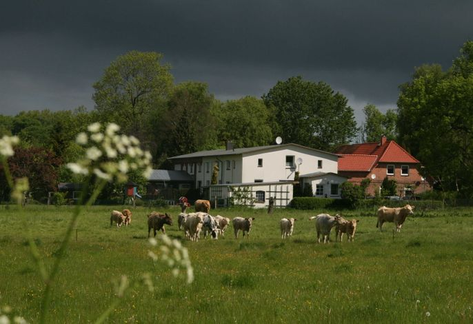 Landhaus am Wald Gersdorf nahe Ostseebad Kühlungsborn