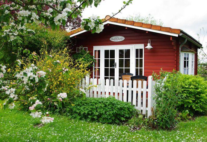 Kleines Gänseblümchen FH, Frau Erich