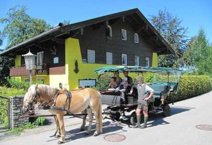 Ferienwohnungen * * * LANDHAUS GERUM mit Kutsche