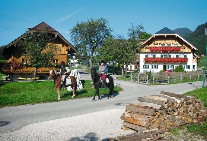 Reiterhof Suassbauer
