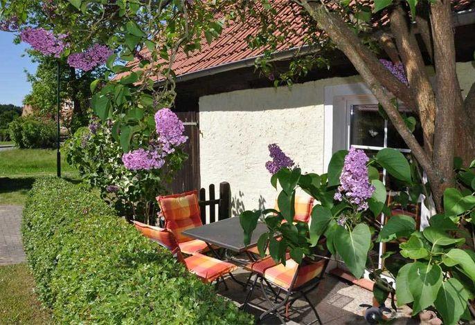 Ferienhaus Grünow SEE 8141